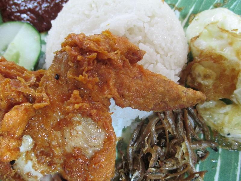 Selera rasa nasi lemak 2