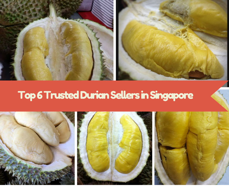 Top 6 Trusted Durian Sellers in Singapore
